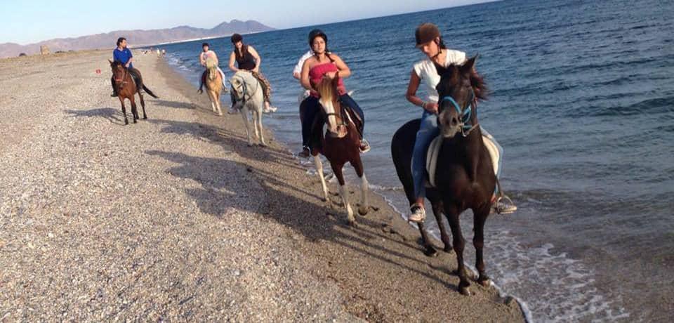 toyo-aventura-ruta-a-la-playa-e1449922722572